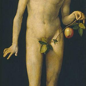 Adam, by Dürer.jpg