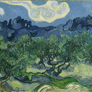 Van Gogh, Olive Trees.jpg