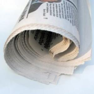 rolled-up-newspaper.jpg