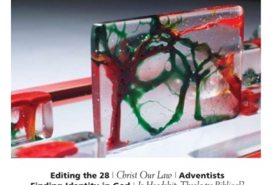 Volume 41, Issue 4, Fall 2013 image